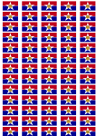 Dallas Flag Stickers - 65 per sheet